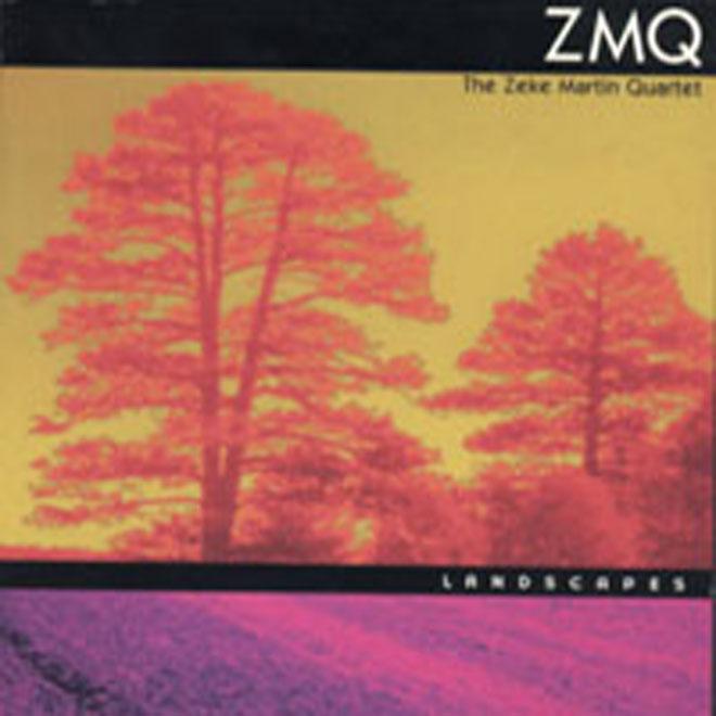 ZMQ Landscapes